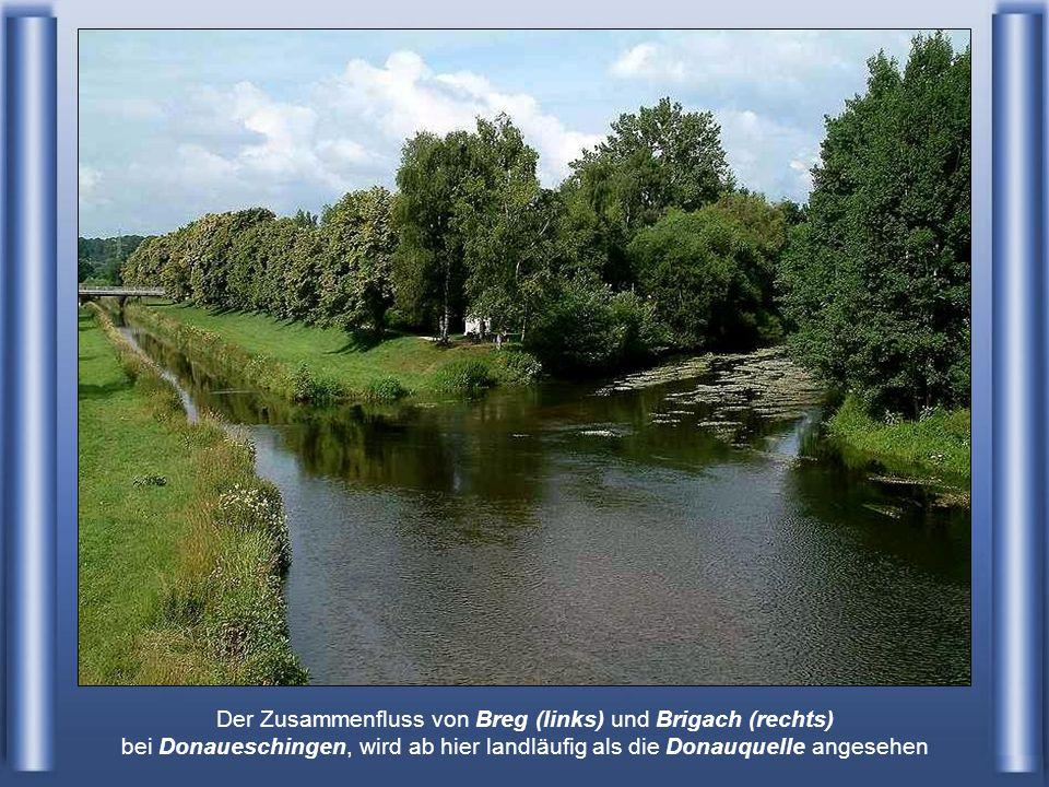 Die Donau ist der zweitlängste Fluss in Europa (nach der Wolga), mit 2.850 Kilometern. Sie entspringt im Schwarzwald, nordwestlich des Bodensees, gesp