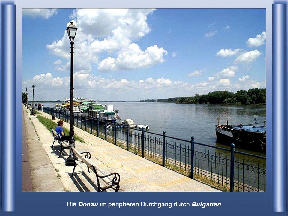 Die Donau im peripheren Durchgang durch Bulgarien