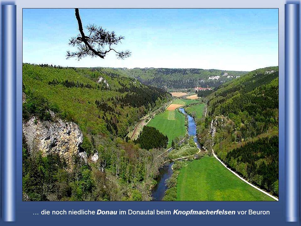 Die Donau bei Donaueschingen - Deutschland