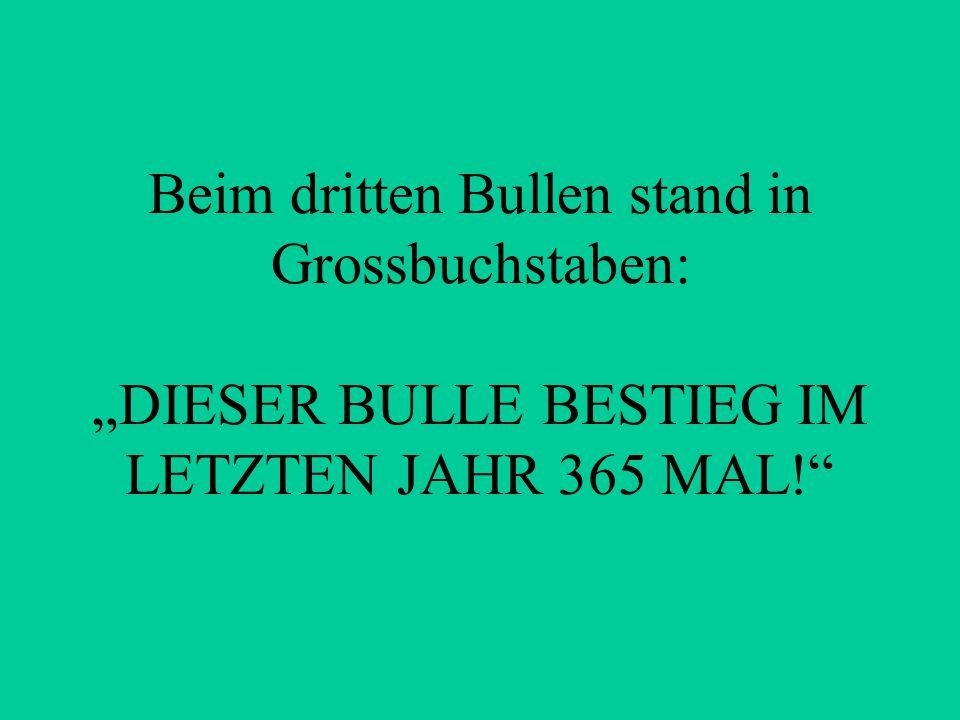 """Beim dritten Bullen stand in Grossbuchstaben: """"DIESER BULLE BESTIEG IM LETZTEN JAHR 365 MAL!"""""""