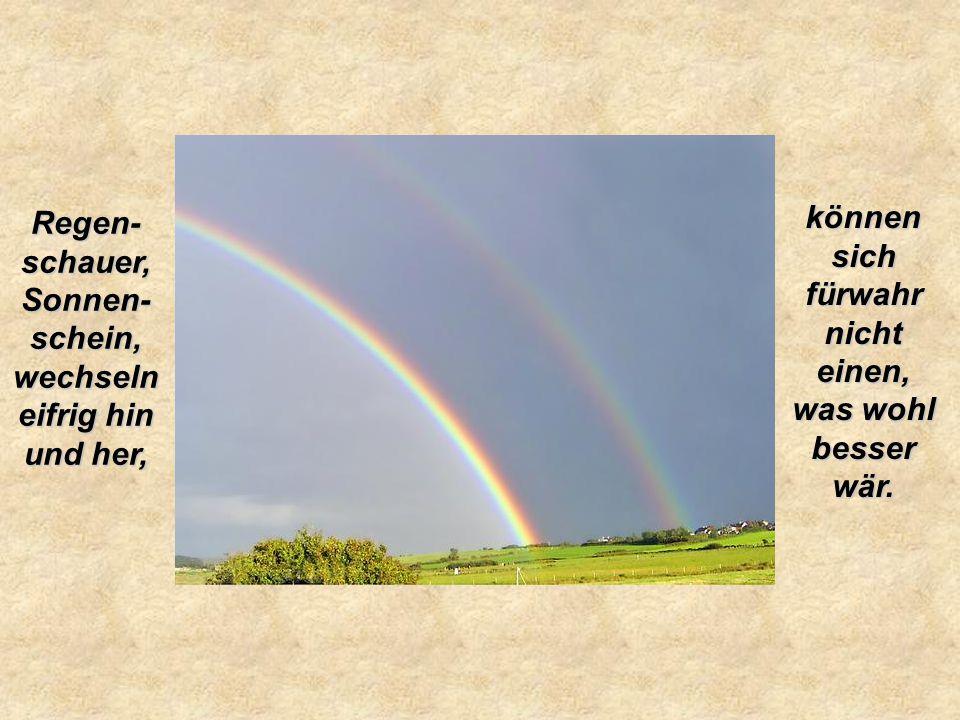 Regen- schauer, Sonnen- schein, wechseln eifrig hin und her, können sich fürwahr nicht einen, was wohl besser wär.