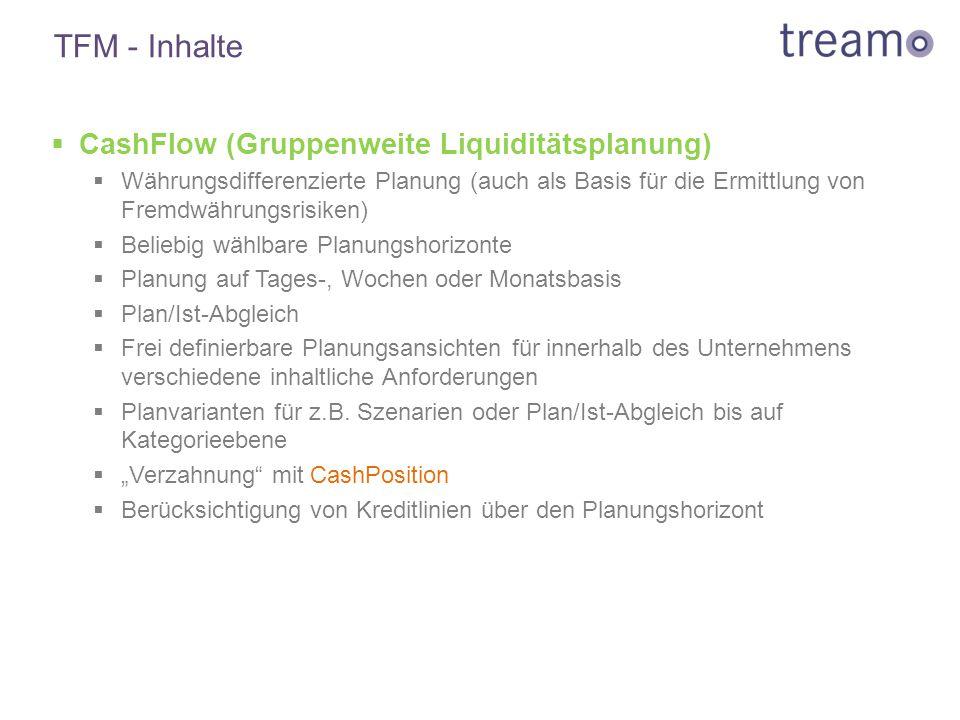 TFM - Inhalte  CashFlow (Gruppenweite Liquiditätsplanung)  Währungsdifferenzierte Planung (auch als Basis für die Ermittlung von Fremdwährungsrisike