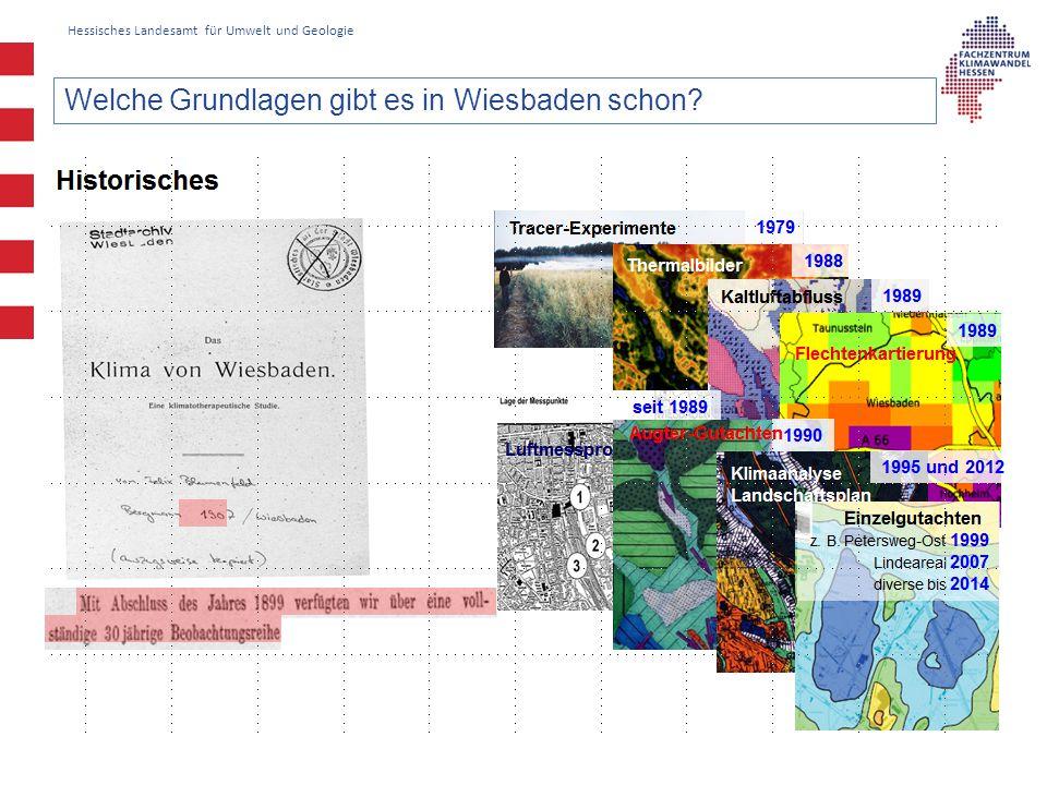 Hessisches Landesamt für Umwelt und Geologie Welche Grundlagen gibt es in Wiesbaden schon?