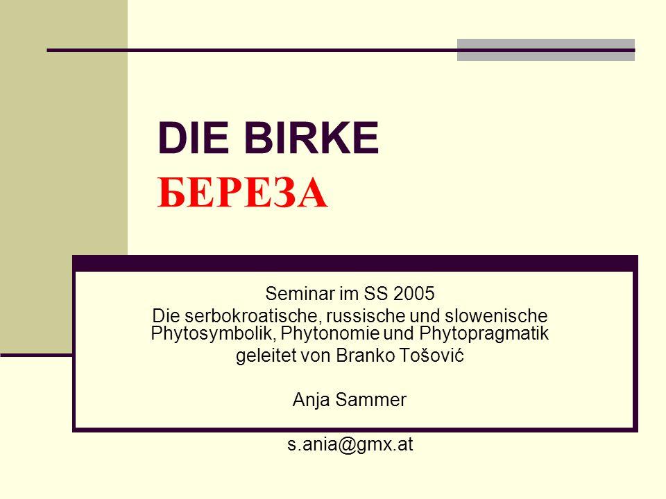 DIE BIRKE БЕРЕЗА Seminar im SS 2005 Die serbokroatische, russische und slowenische Phytosymbolik, Phytonomie und Phytopragmatik geleitet von Branko To