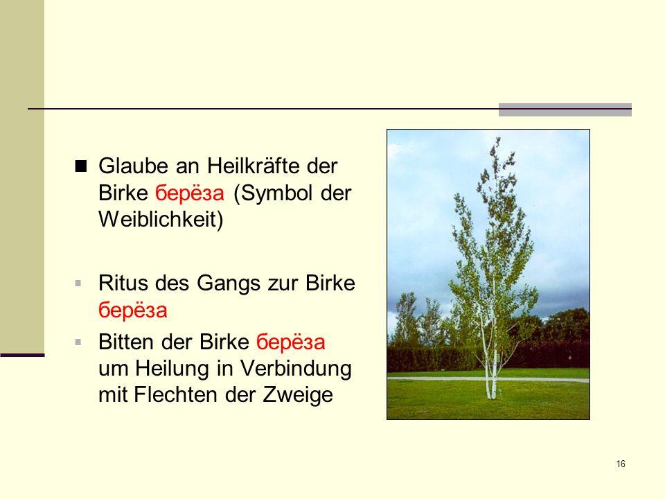16 Glaube an Heilkräfte der Birke берëза (Symbol der Weiblichkeit)  Ritus des Gangs zur Birke берëза  Bitten der Birke берëза um Heilung in Verbindu