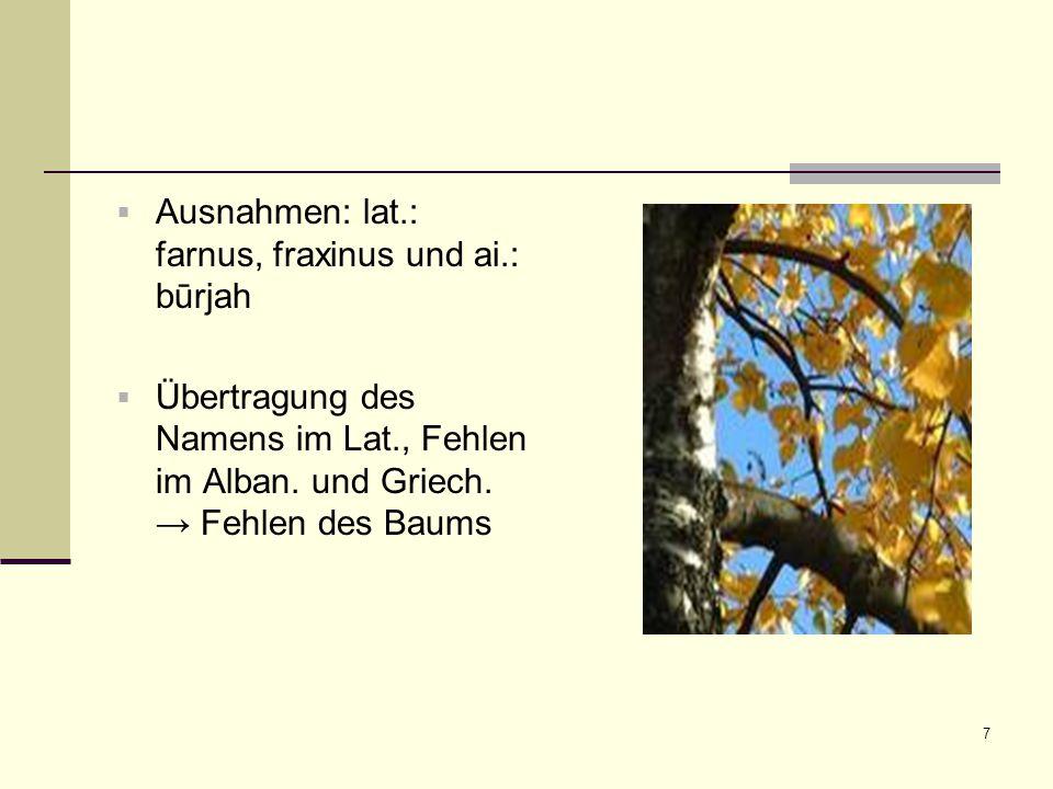 7  Ausnahmen: lat.: farnus, fraxinus und ai.: būrjah  Übertragung des Namens im Lat., Fehlen im Alban. und Griech. → Fehlen des Baums