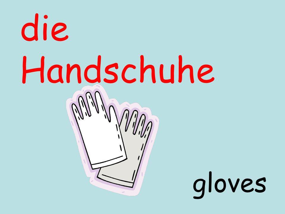 die Handschuhe gloves