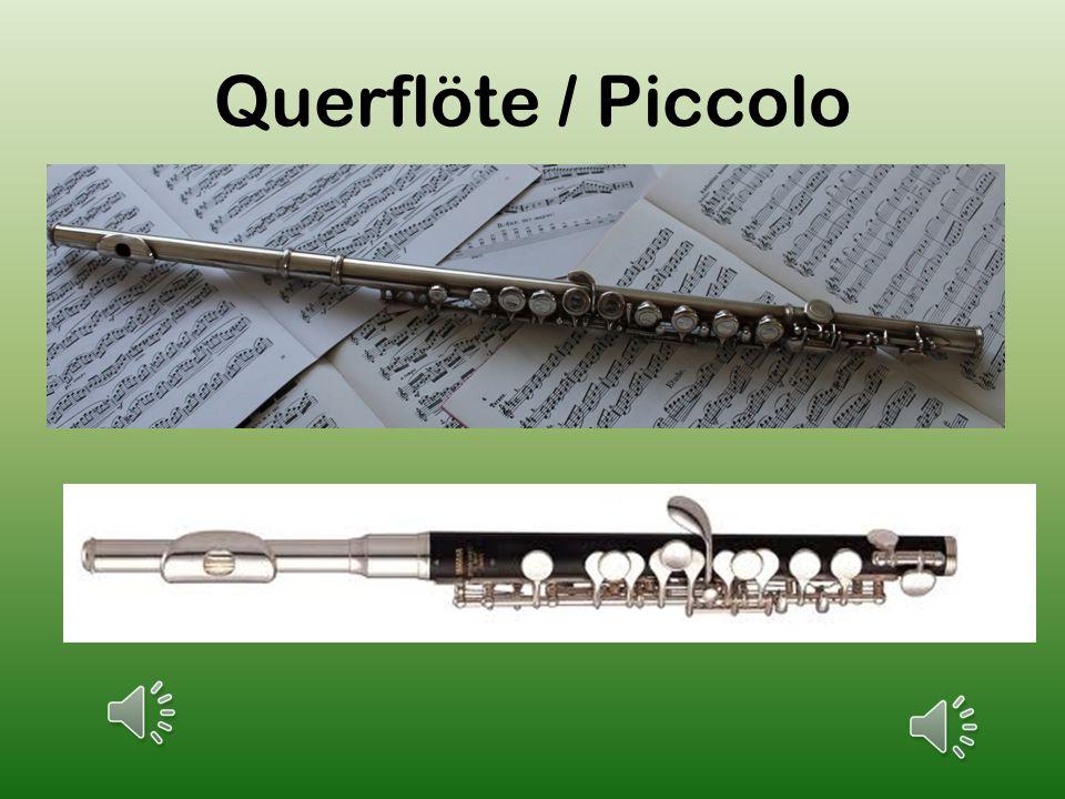Sie gehört zu der Gruppe der Holzblasinstrumente und ist vielseitiges, Instrument.