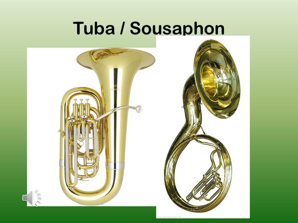 Die Posaune ist das einzige Blechblasinstrument, bei welchem die Tonhöhe nicht mittels Ventilen verändert wird.
