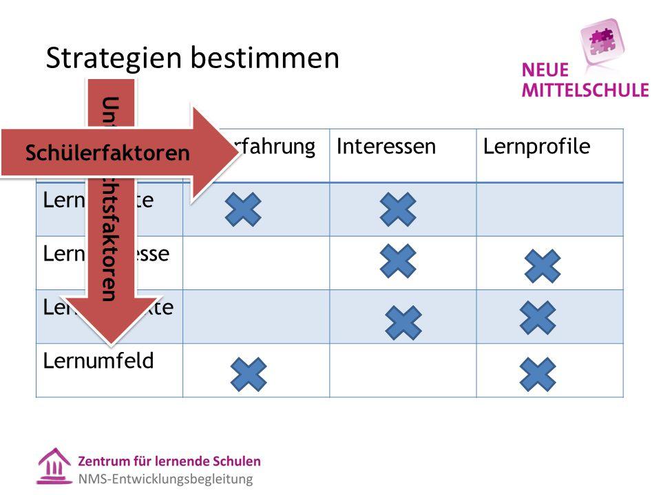 Strategien bestimmen VorerfahrungInteressenLernprofile Lerninhalte Lernprozesse Lernprodukte Lernumfeld Unterrichtsfaktoren Schülerfaktoren