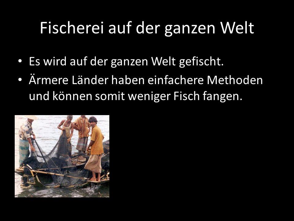 Fischerei auf der ganzen Welt Es wird auf der ganzen Welt gefischt. Ärmere Länder haben einfachere Methoden und können somit weniger Fisch fangen.