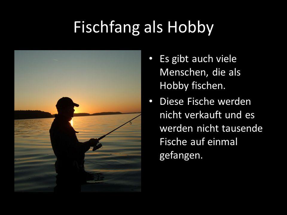 Fischfang als Hobby Es gibt auch viele Menschen, die als Hobby fischen. Diese Fische werden nicht verkauft und es werden nicht tausende Fische auf ein