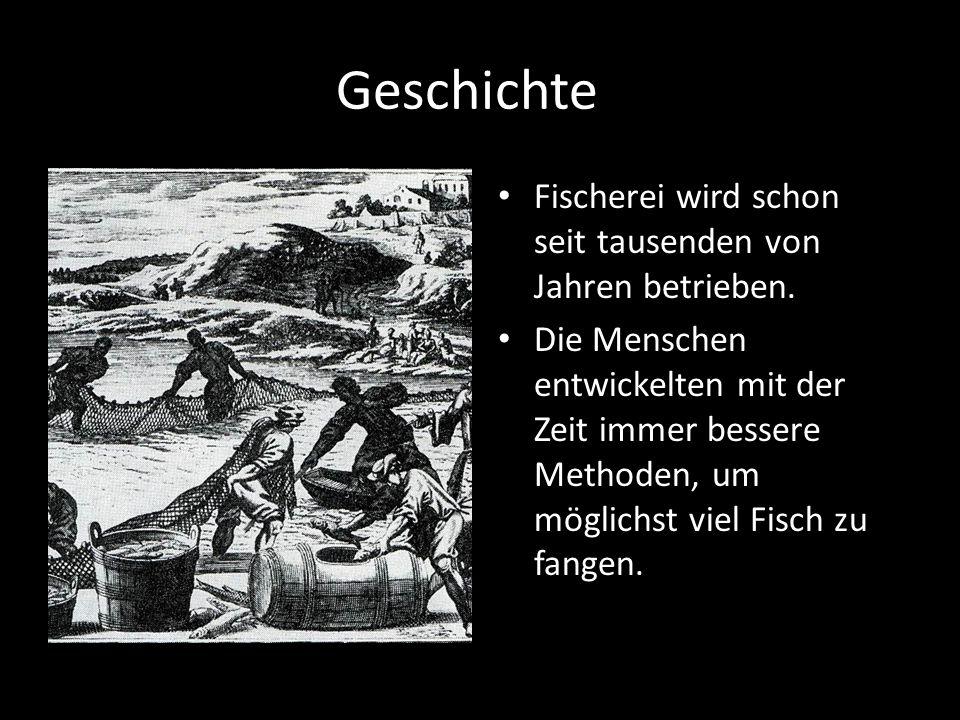 Geschichte Fischerei wird schon seit tausenden von Jahren betrieben. Die Menschen entwickelten mit der Zeit immer bessere Methoden, um möglichst viel