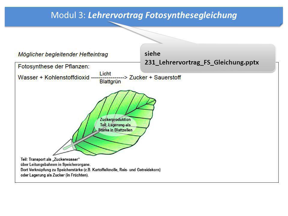 Modul 3: Lehrervortrag Fotosynthesegleichung siehe 231_Lehrervortrag_FS_Gleichung.pptx siehe 231_Lehrervortrag_FS_Gleichung.pptx