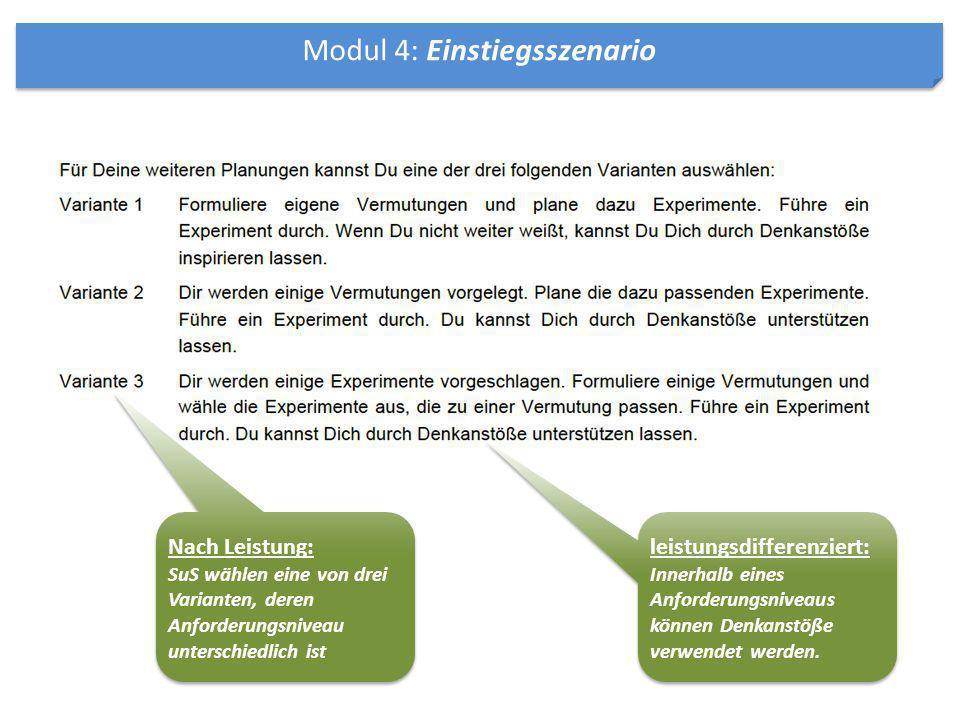 Modul 4: Einstiegsszenario Nach Leistung: SuS wählen eine von drei Varianten, deren Anforderungsniveau unterschiedlich ist Nach Leistung: SuS wählen e