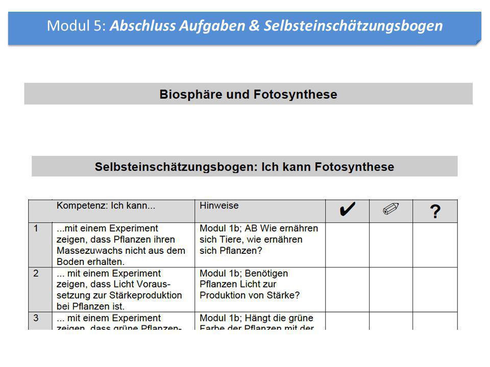Modul 5: Abschluss Aufgaben & Selbsteinschätzungsbogen
