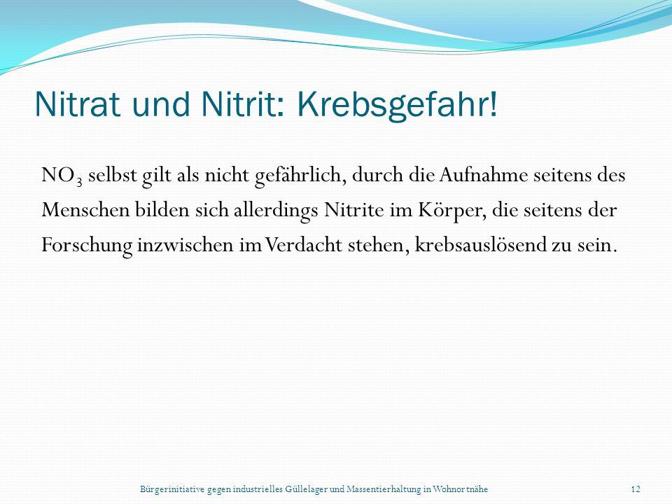 Bürgerinitiative gegen industrielles Güllelager und Massentierhaltung in Wohnortnähe12 Nitrat und Nitrit: Krebsgefahr! NO 3 selbst gilt als nicht gefä