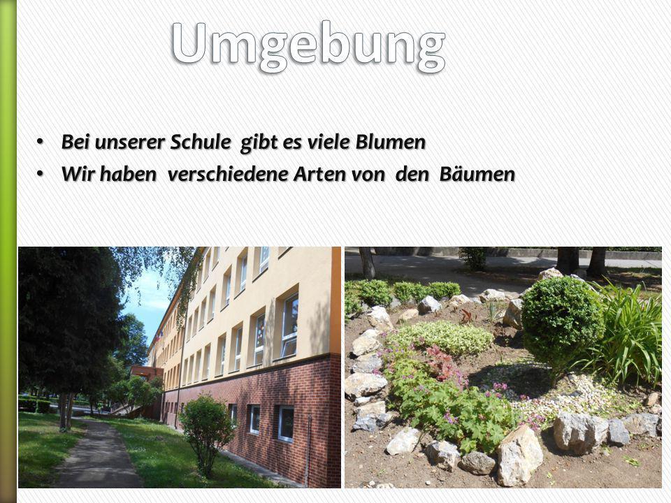 Bei unserer Schule gibt es viele Blumen Bei unserer Schule gibt es viele Blumen Wir haben verschiedene Arten von den Bäumen Wir haben verschiedene Art