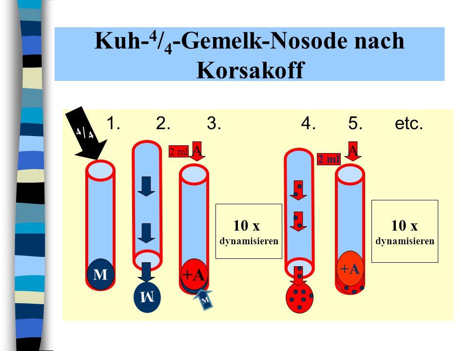 Kuh- 4 / 4 -Gemelk-Nosode nach Korsakoff 1. 2. 3.4.5.etc. M M +A+A M A 2 ml 10 x dynamisieren +A+A 2 ml A 10 x dynamisieren 4/44/4