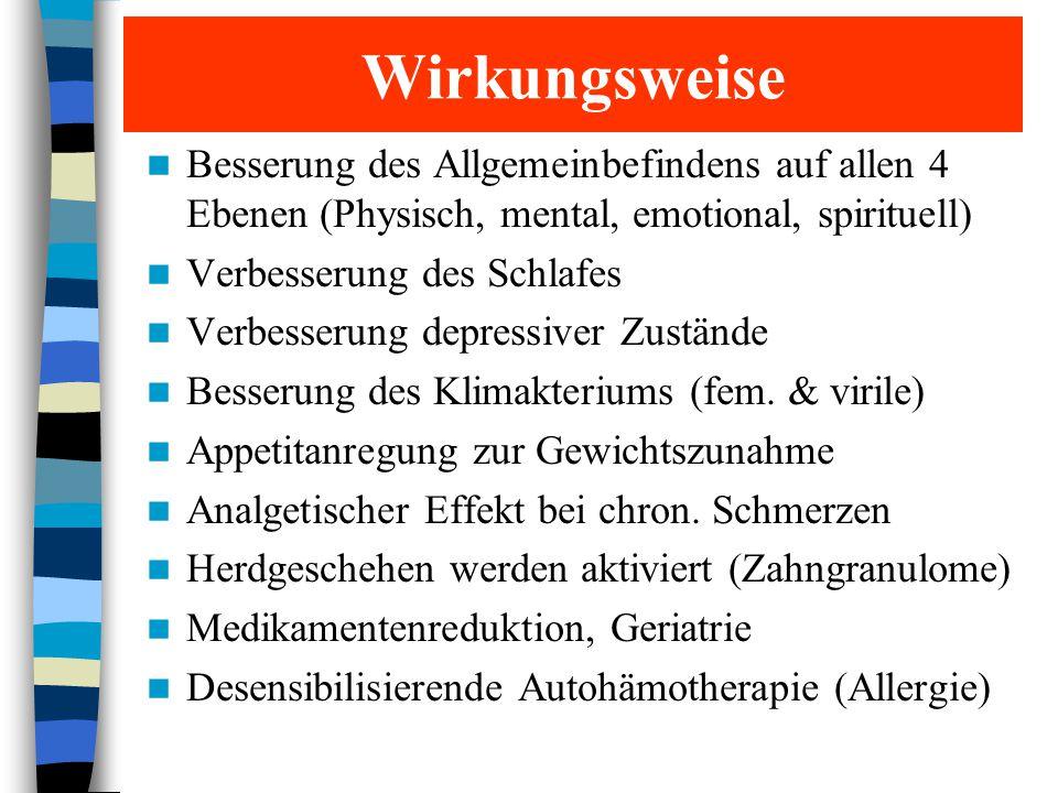 Ausleitungs-Mittel Leber: Mariendistel, Artischocke, Berberis, Selenmethionin, Californian Puppy, Vit.