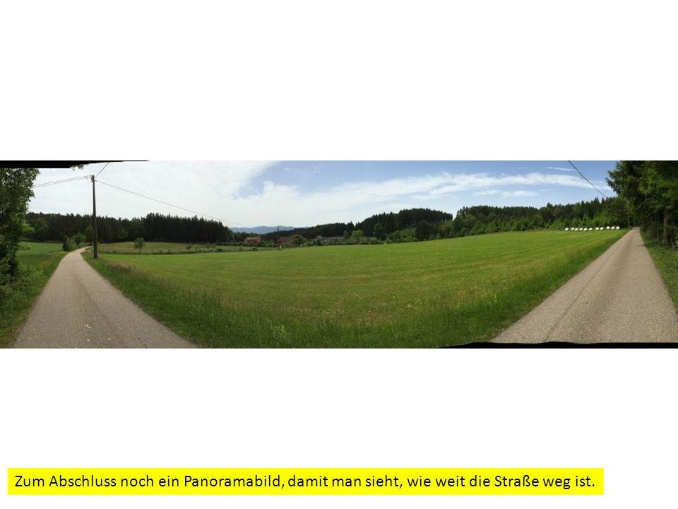 Zum Abschluss noch ein Panoramabild, damit man sieht, wie weit die Straße weg ist.