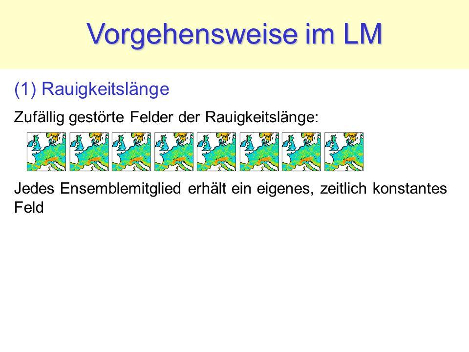 (1) Rauigkeitslänge Zufällig gestörte Felder der Rauigkeitslänge: Vorgehensweise im LM Jedes Ensemblemitglied erhält ein eigenes, zeitlich konstantes