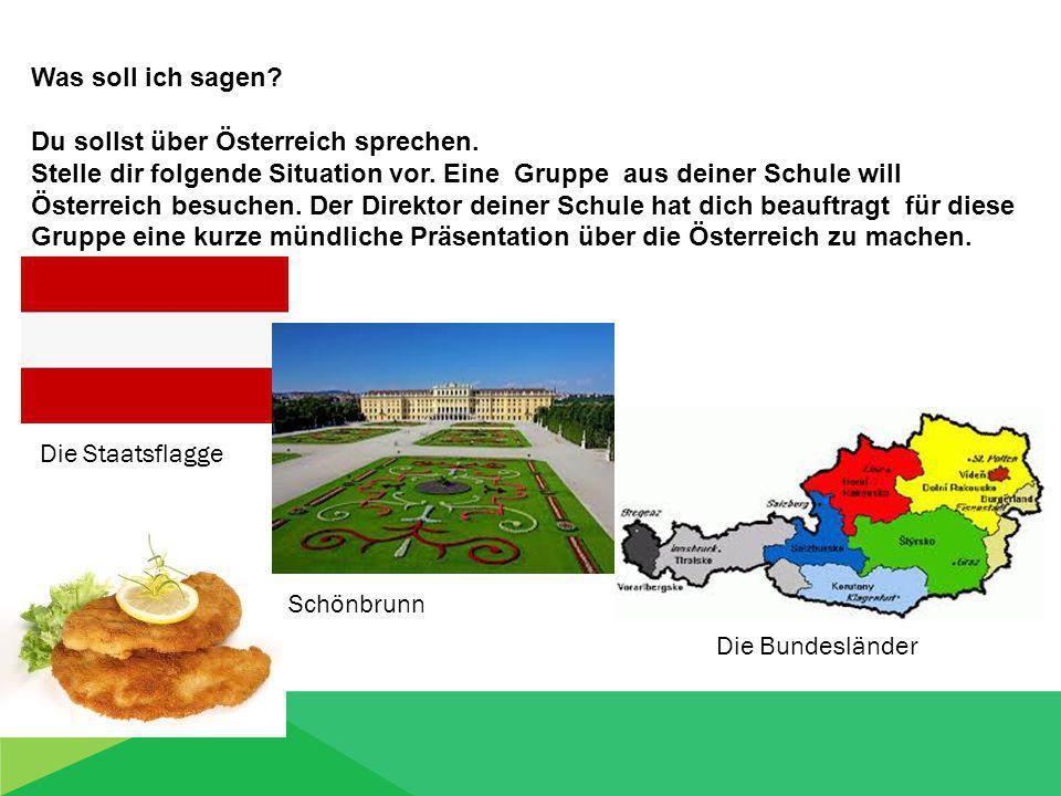 Was soll ich sagen. Du sollst über Österreich sprechen.
