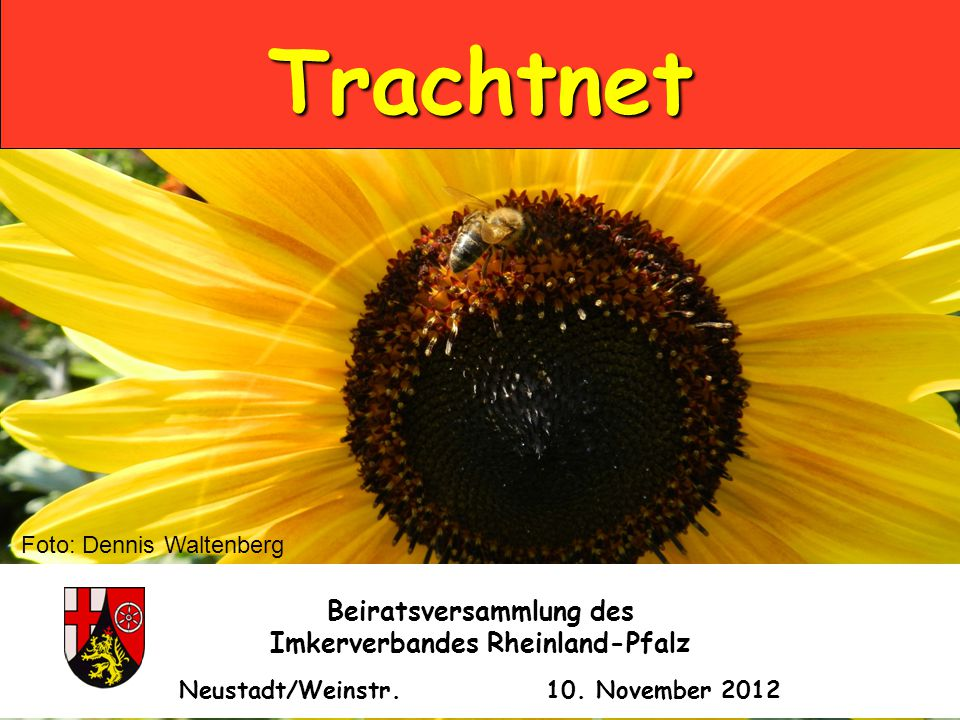 Trachtnet Beiratsversammlung des Imkerverbandes Rheinland-Pfalz Neustadt/Weinstr.