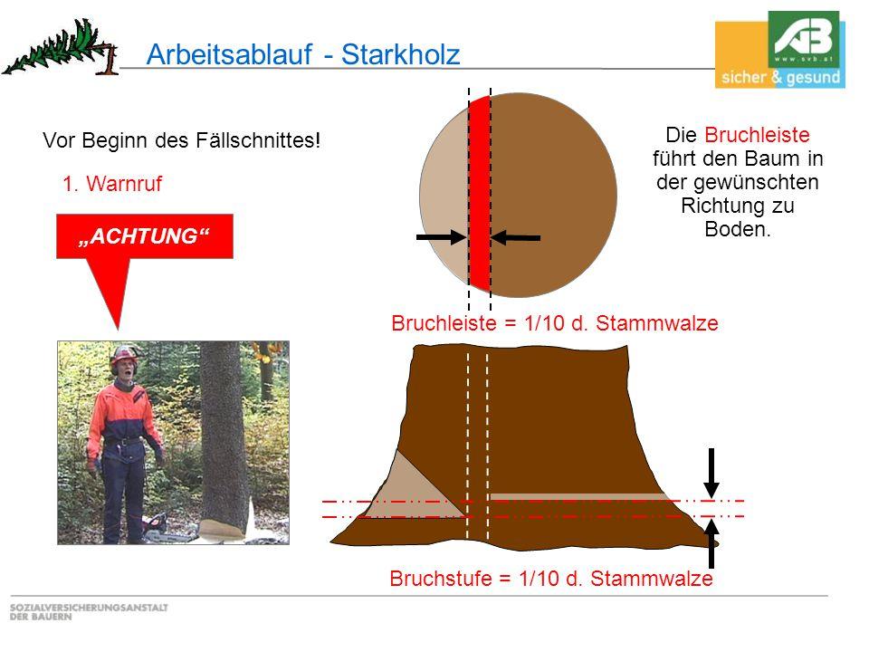 """Die Bruchleiste führt den Baum in der gewünschten Richtung zu Boden. Bruchstufe = 1/10 d. Stammwalze Bruchleiste = 1/10 d. Stammwalze 1. Warnruf """"ACHT"""