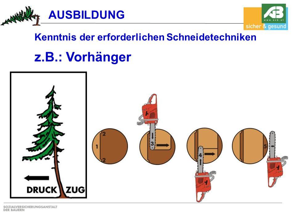 Kenntnis der erforderlichen Schneidetechniken z.B.: Vorhänger AUSBILDUNG