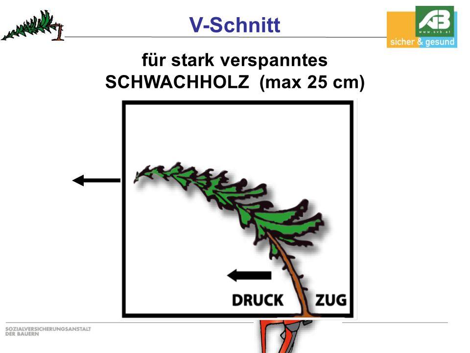 V-Schnitt für stark verspanntes SCHWACHHOLZ (max 25 cm)