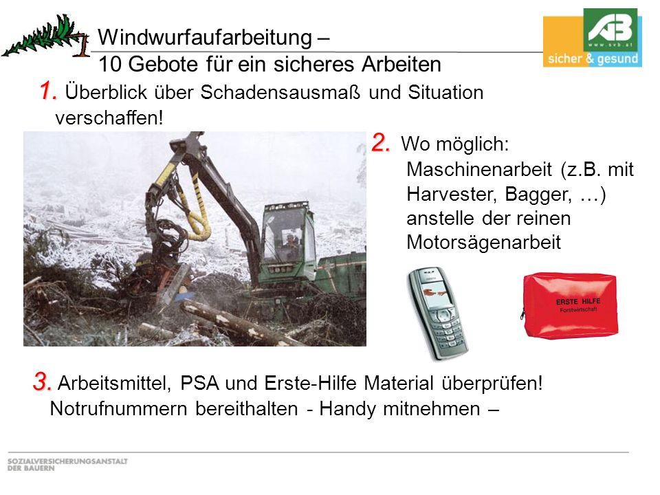 2. 2. Wo möglich: Maschinenarbeit (z.B. mit Harvester, Bagger, …) anstelle der reinen Motorsägenarbeit 1. 1. Überblick über Schadensausmaß und Situati