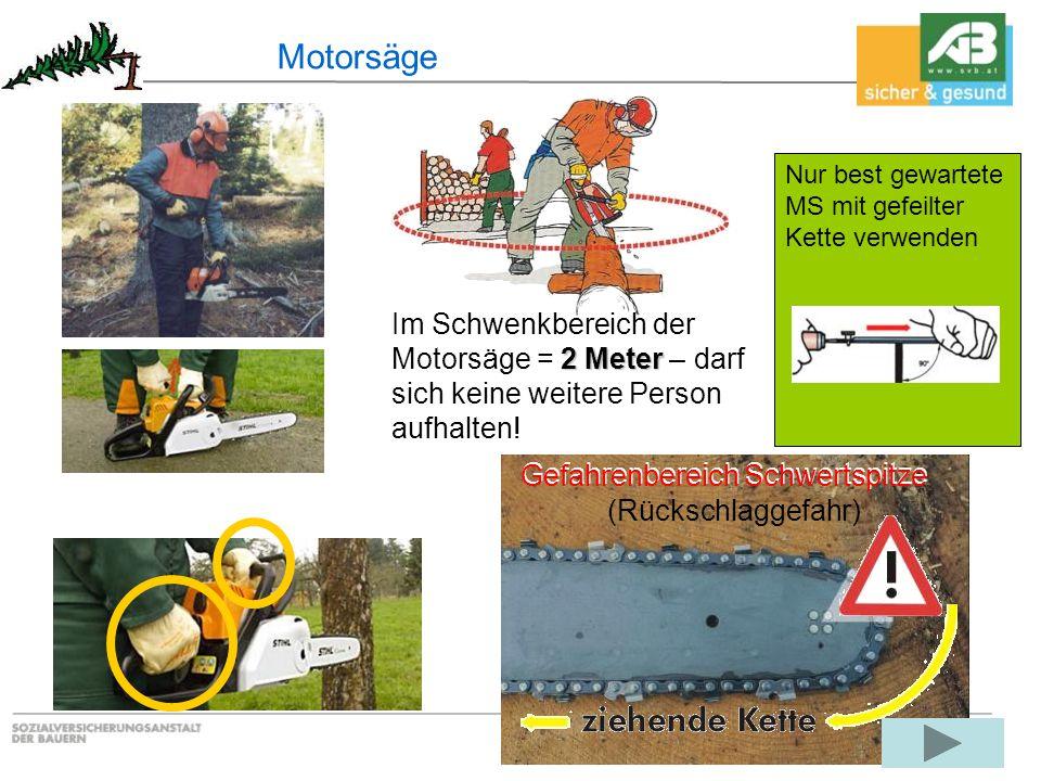 Motorsäge 2 Meter Im Schwenkbereich der Motorsäge = 2 Meter – darf sich keine weitere Person aufhalten! Gefahrenbereich Schwertspitze (Rückschlaggefah