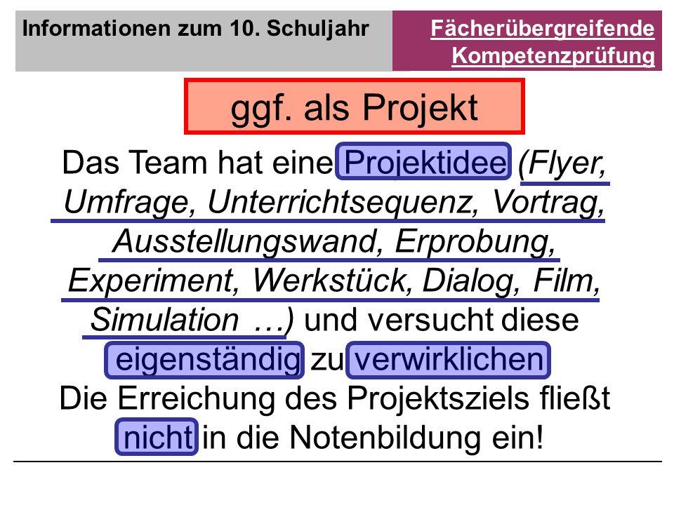 ggf. als Projekt Das Team hat eine Projektidee (Flyer, Umfrage, Unterrichtsequenz, Vortrag, Ausstellungswand, Erprobung, Experiment, Werkstück, Dialog