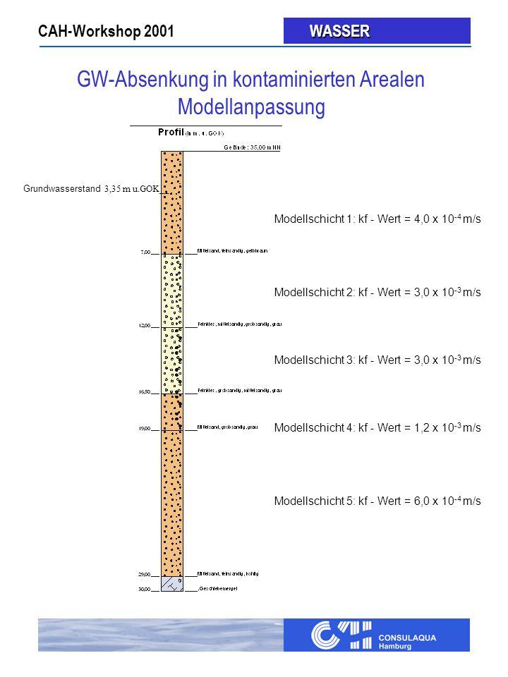 CAH-Workshop 2001 WASSER WASSER Modellschicht 1: kf - Wert = 4,0 x 10 -4 m/s Modellschicht 2: kf - Wert = 3,0 x 10 -3 m/s Modellschicht 3: kf - Wert = 3,0 x 10 -3 m/s Modellschicht 4: kf - Wert = 1,2 x 10 -3 m/s Modellschicht 5: kf - Wert = 6,0 x 10 -4 m/s Grundwasserstand 3,35 m u.GOK__ GW-Absenkung in kontaminierten Arealen Modellanpassung