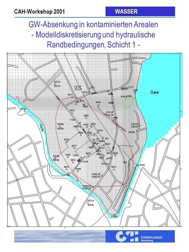 CAH-Workshop 2001 WASSER WASSER GW-Absenkung in kontaminierten Arealen - Modelldiskretisierung und hydraulische Randbedingungen, Schicht 1 -