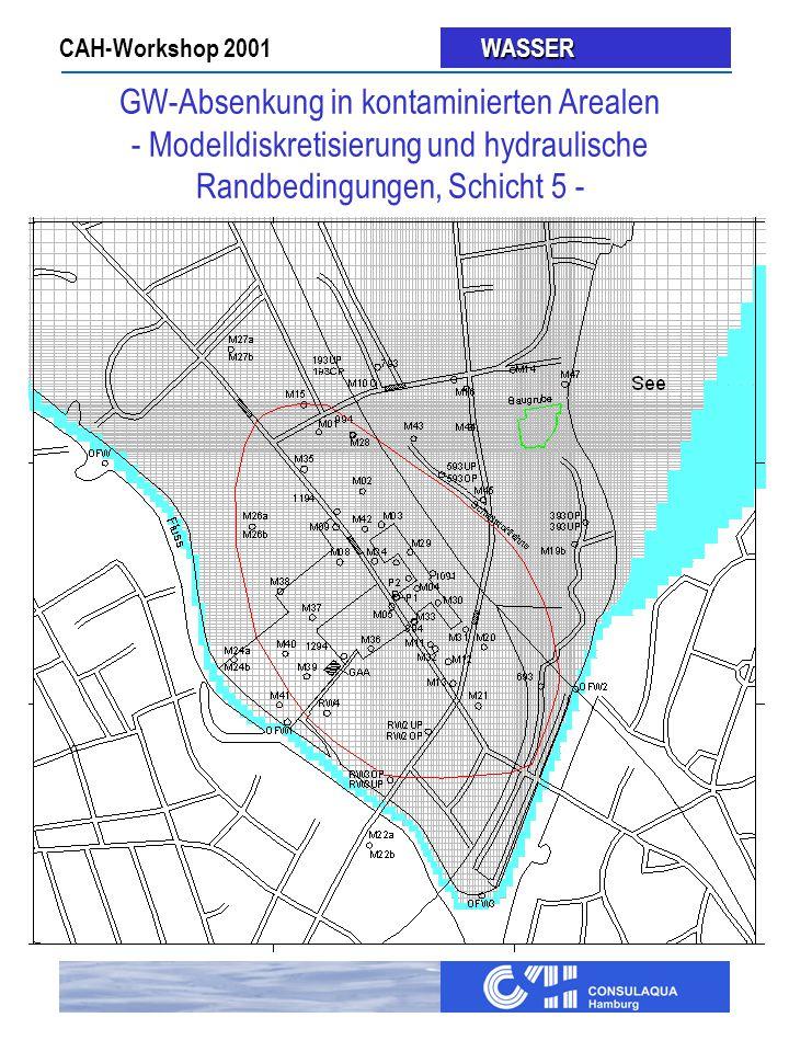 CAH-Workshop 2001 WASSER WASSER GW-Absenkung in kontaminierten Arealen - Modelldiskretisierung und hydraulische Randbedingungen, Schicht 5 -