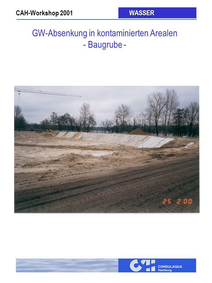 CAH-Workshop 2001 WASSER WASSER GW-Absenkung in kontaminierten Arealen - Baugrube -