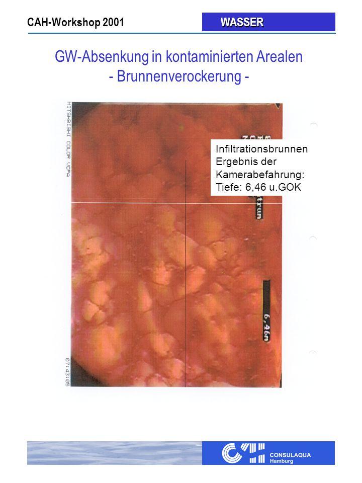 CAH-Workshop 2001 WASSER WASSER Infiltrationsbrunnen Ergebnis der Kamerabefahrung: Tiefe: 6,46 u.GOK GW-Absenkung in kontaminierten Arealen - Brunnenverockerung -