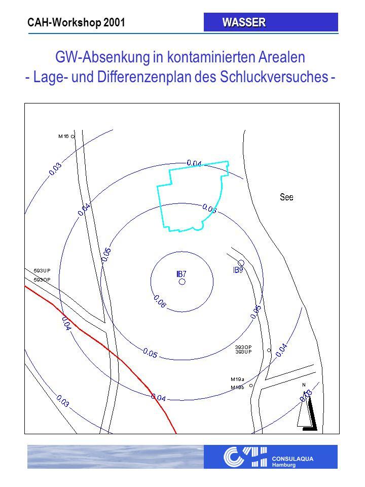 CAH-Workshop 2001 WASSER WASSER GW-Absenkung in kontaminierten Arealen - Lage- und Differenzenplan des Schluckversuches -