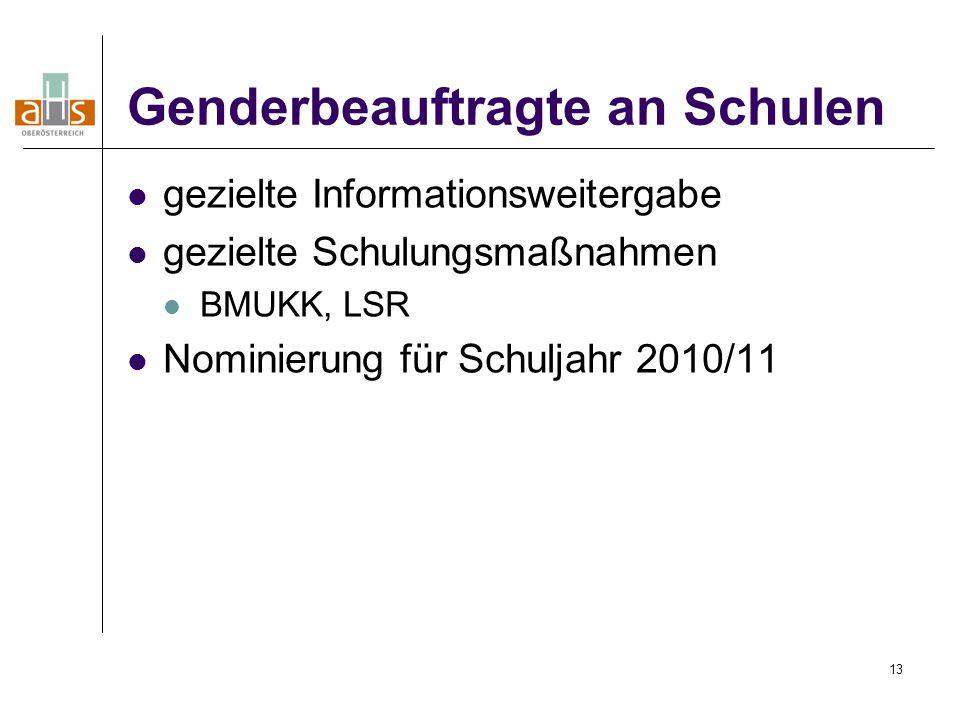13 Genderbeauftragte an Schulen gezielte Informationsweitergabe gezielte Schulungsmaßnahmen BMUKK, LSR Nominierung für Schuljahr 2010/11