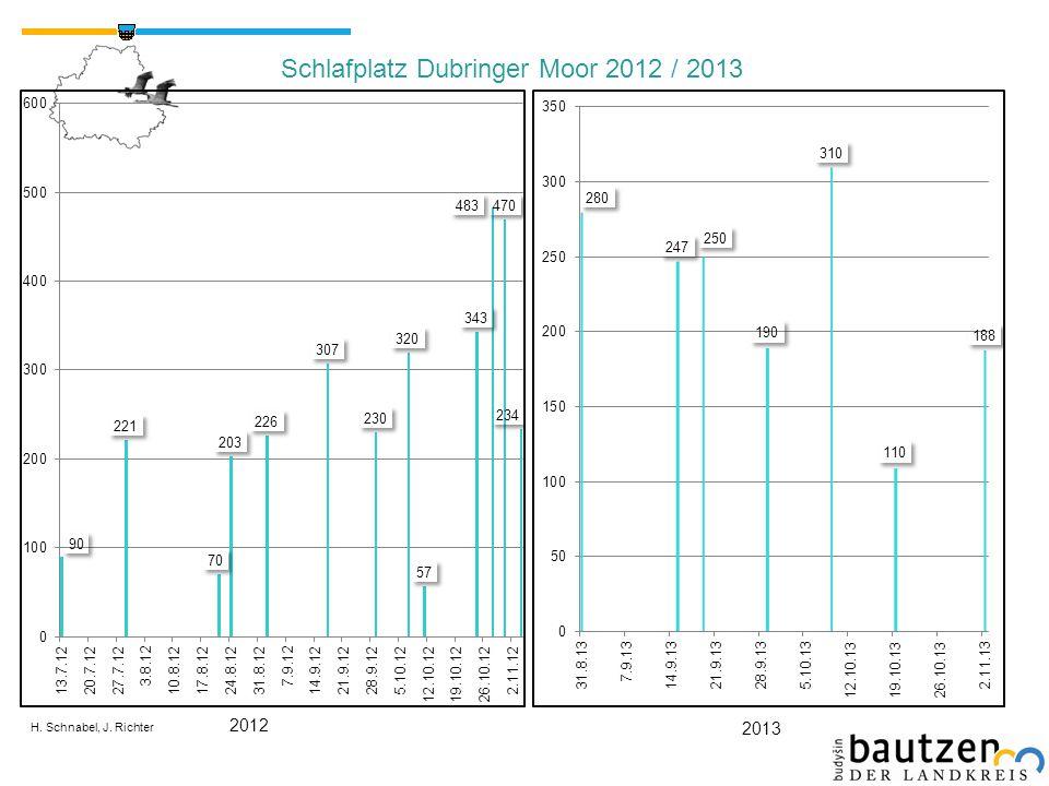 H. Schnabel, J. Richter Schlafplatz Dubringer Moor 2012 / 2013 2012 2013