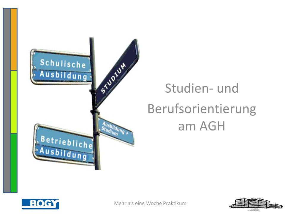 Mehr als eine Woche Praktikum Studien- und Berufsorientierung am AGH