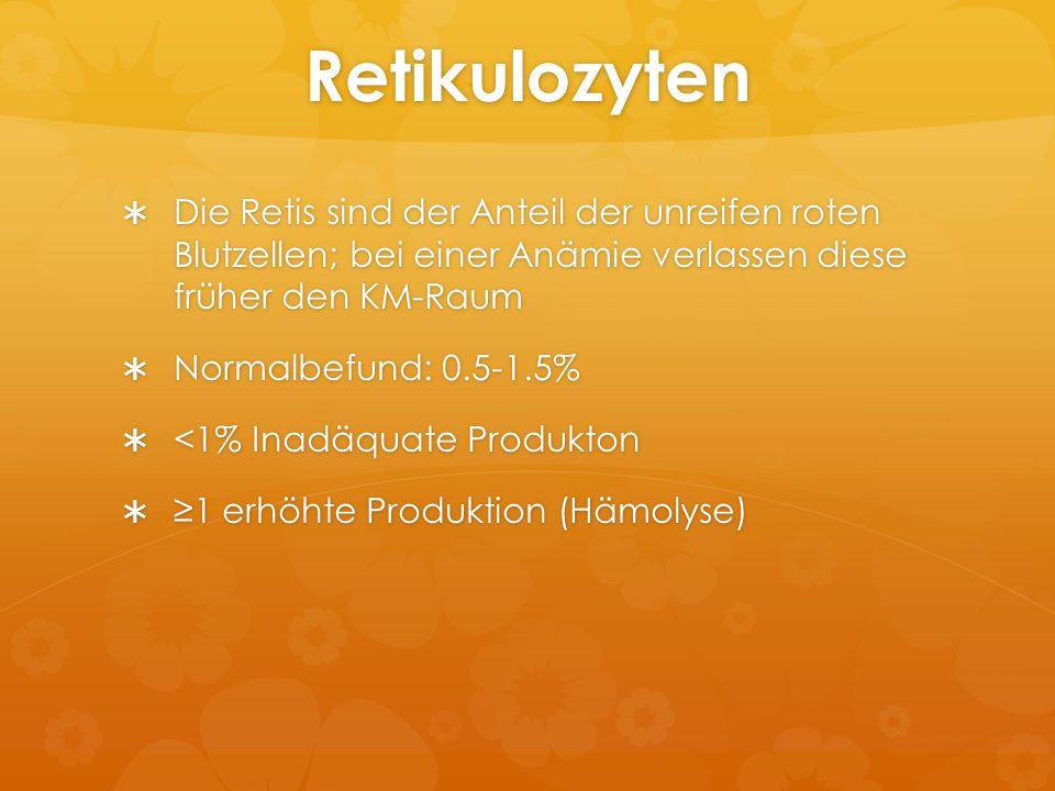 Retikulozyten  Die Retis sind der Anteil der unreifen roten Blutzellen; bei einer Anämie verlassen diese früher den KM-Raum  Normalbefund: 0.5-1.5%