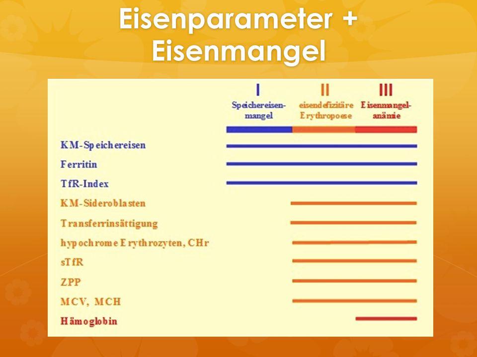 Eisenparameter + Eisenmangel