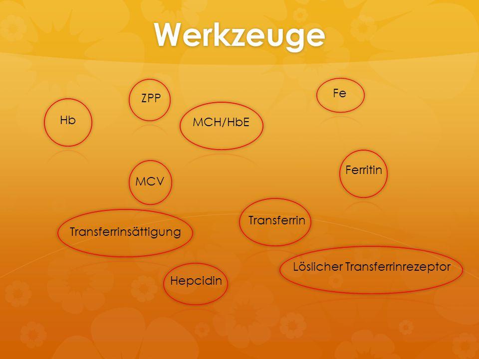 Werkzeuge Hb MCV MCH/HbE Fe Ferritin Transferrin Transferrinsättigung Hepcidin Löslicher Transferrinrezeptor ZPP