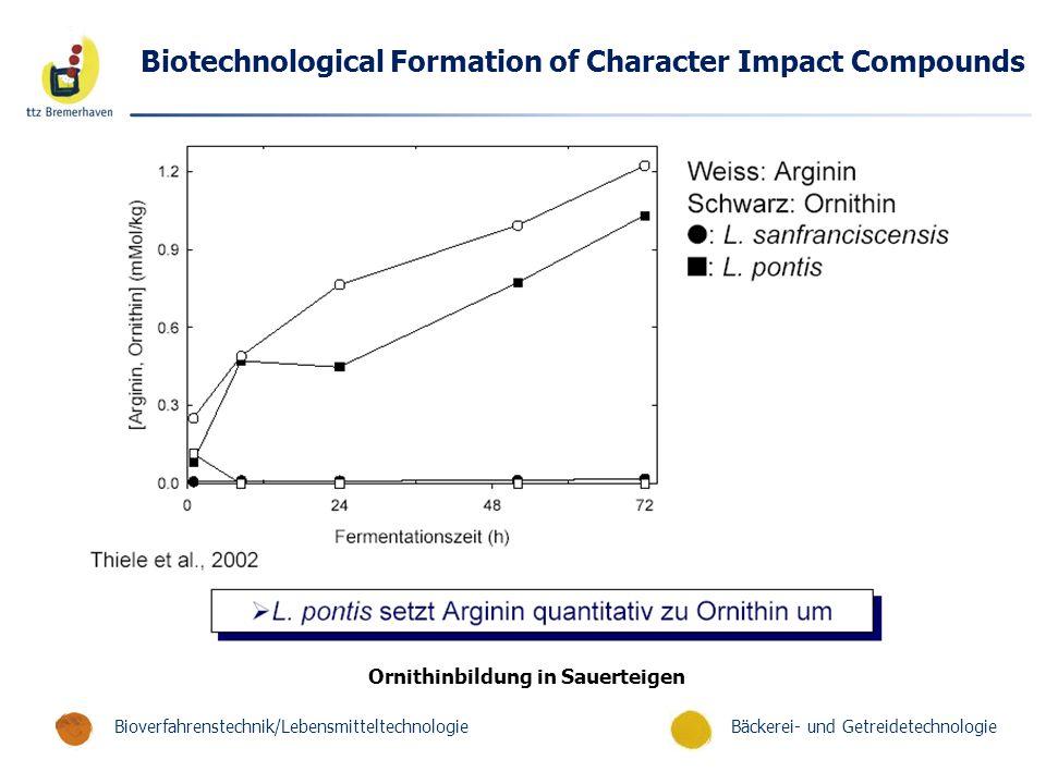 Bäckerei- und GetreidetechnologieBioverfahrenstechnik/Lebensmitteltechnologie Biotechnological Formation of Character Impact Compounds Ornithinbildung in Sauerteigen