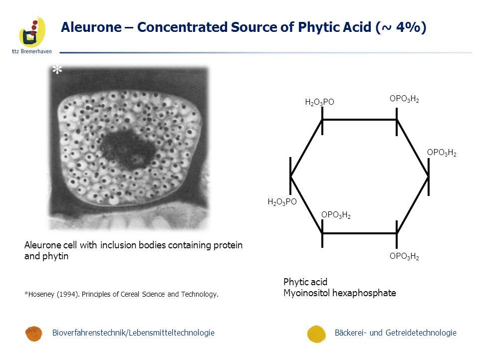 Bäckerei- und GetreidetechnologieBioverfahrenstechnik/Lebensmitteltechnologie Aleurone – Concentrated Source of Phytic Acid (~ 4%) Phytic acid Myoinositol hexaphosphate Aleurone cell with inclusion bodies containing protein and phytin *Hoseney (1994).