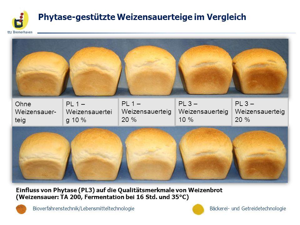Bäckerei- und GetreidetechnologieBioverfahrenstechnik/Lebensmitteltechnologie Phytase-gestützte Weizensauerteige im Vergleich Ohne Weizensauer- teig PL 1 – Weizensauertei g 10 % PL 1 – Weizensauerteig 20 % PL 3 – Weizensauerteig 10 % PL 3 – Weizensauerteig 20 % Einfluss von Phytase (PL3) auf die Qualitätsmerkmale von Weizenbrot (Weizensauer: TA 200, Fermentation bei 16 Std.