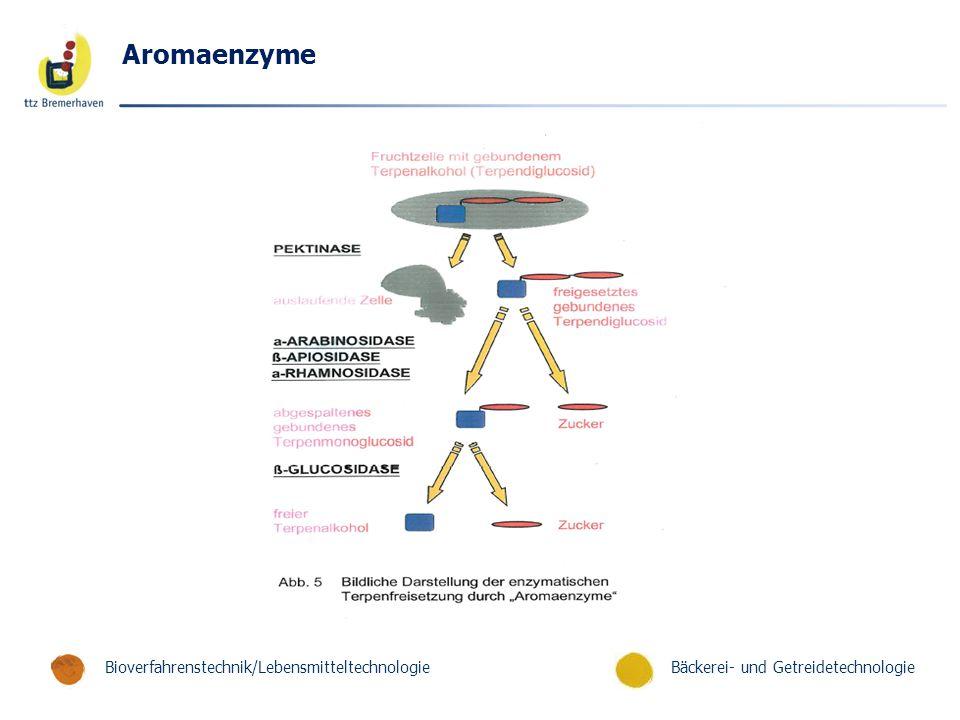 Bäckerei- und GetreidetechnologieBioverfahrenstechnik/Lebensmitteltechnologie Aromaenzyme